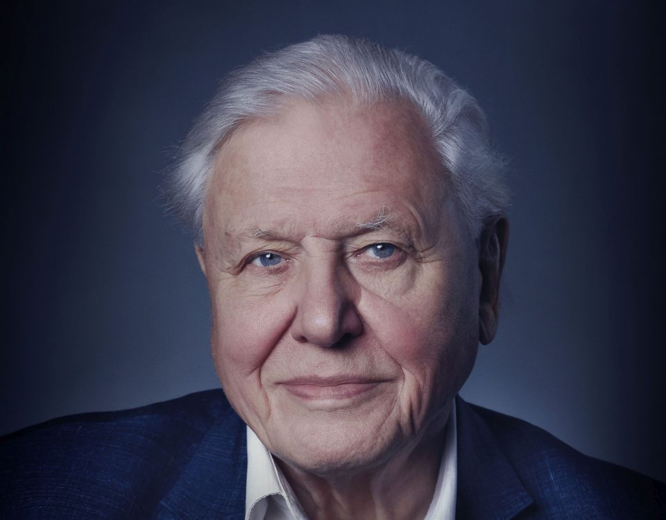 David Attenborough portret