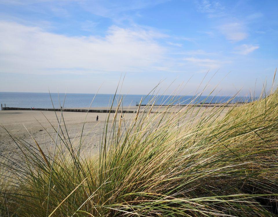 duinen van Vlissingen