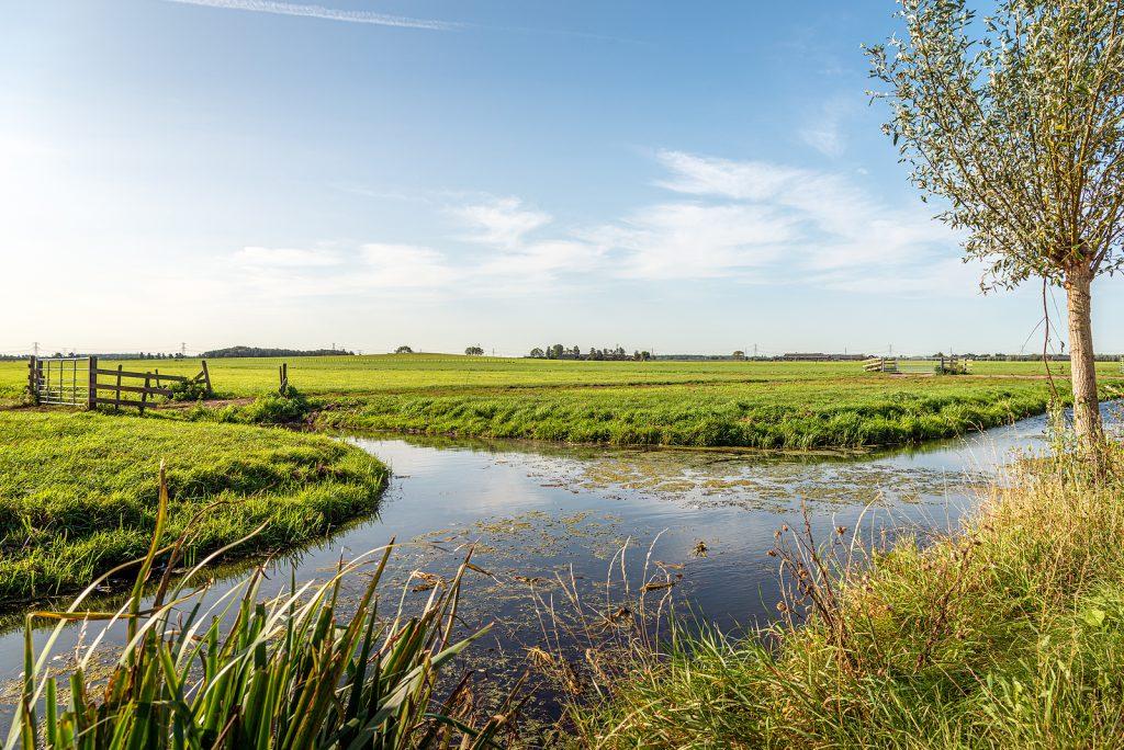 Nederlandse boerenvelden